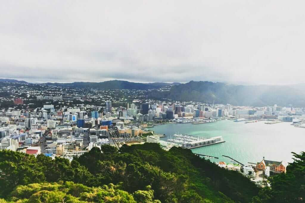 Wellington NZ aerial picture