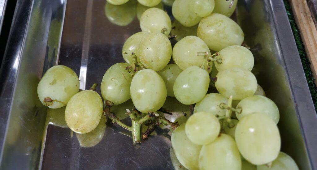 Suihou grapes